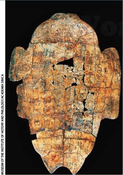 中国古代甲骨上对彗星的记载.jpg