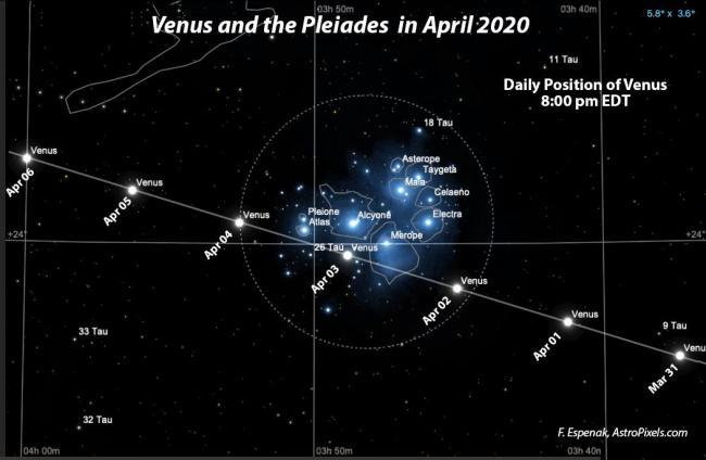 2020年金星和昴星团的相对位置示意图