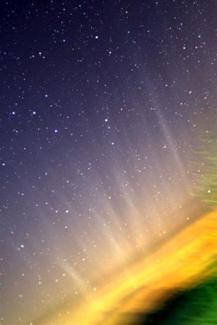 1月19日,意大利的Rolando Ligustri拍摄到彗尾,即使看不彗星核心。