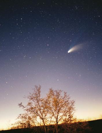 1997年3月29日,Salzgeber在克罗地亚拍摄到的彗星,彗星的右下方是仙女座大星系